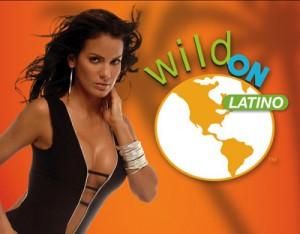 wildon-x1_0