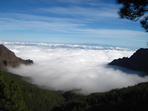 Las neblinas del Parque Nacional las Cañadas del Teide