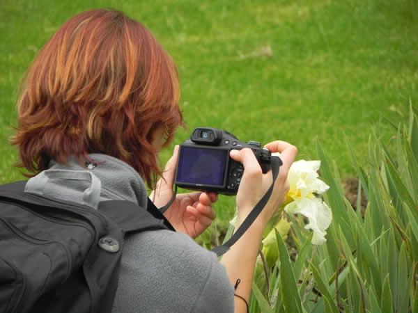 Curso de Fotografía de Naturaleza