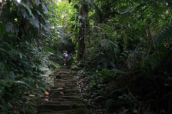La gran escalinata