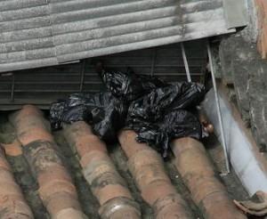 El cuerpo descuartizado y botado en los tejados del Centro.