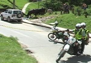 La escena del crimen del ganadero en Bello.