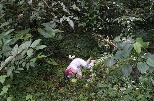 Así fue encontrada la mujer, en medio de un bosque de Envigado.