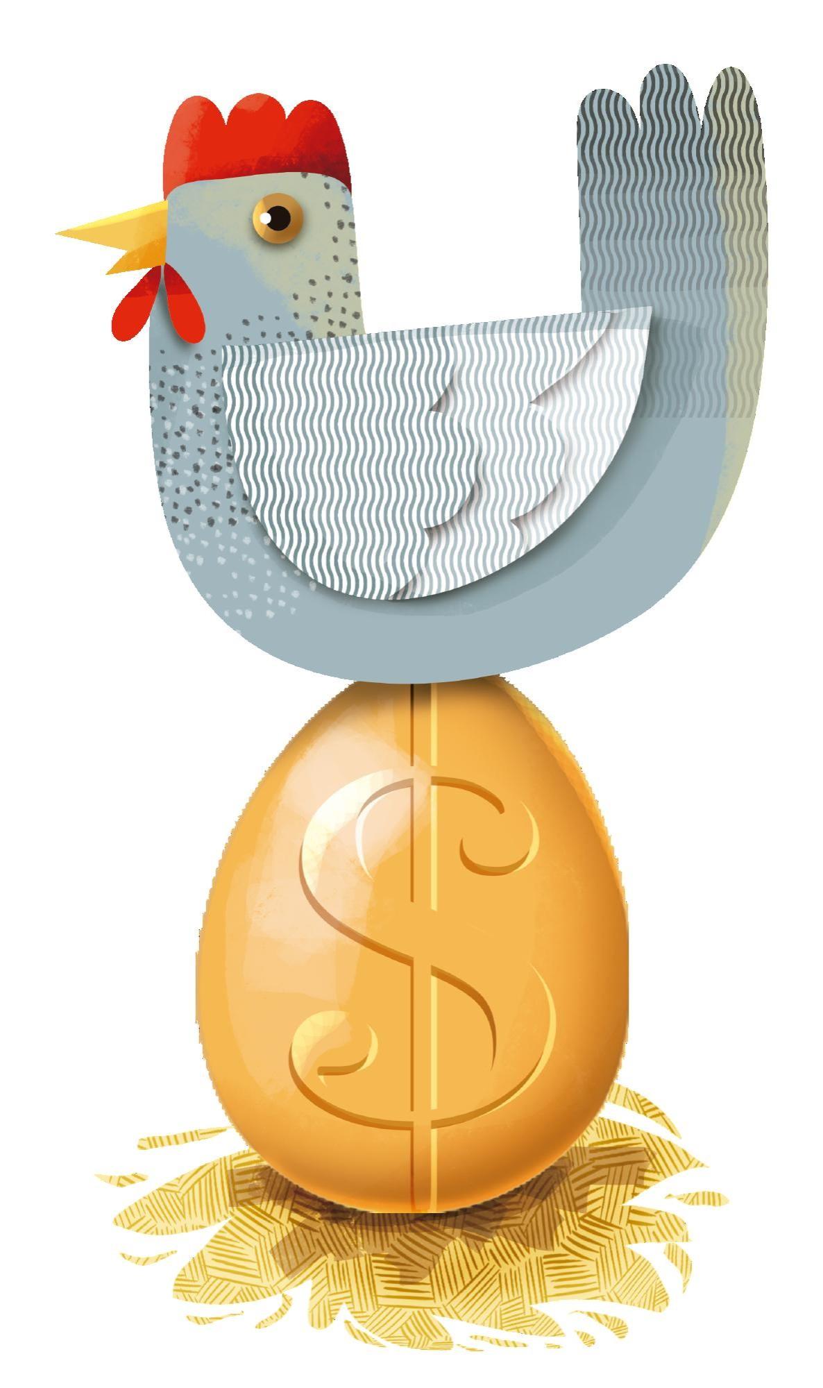 Avicultura: mayor consumo huevo y pollo