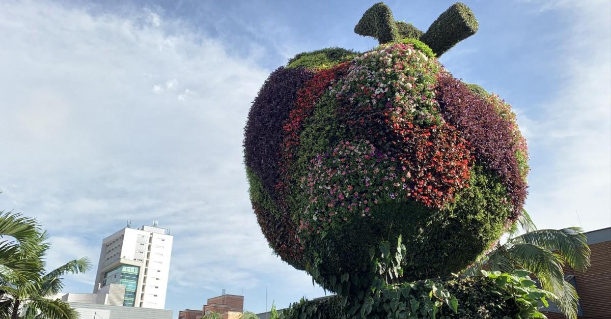El Centro Comercial Oviedo celebra su aniversario número 40 - El Colombiano