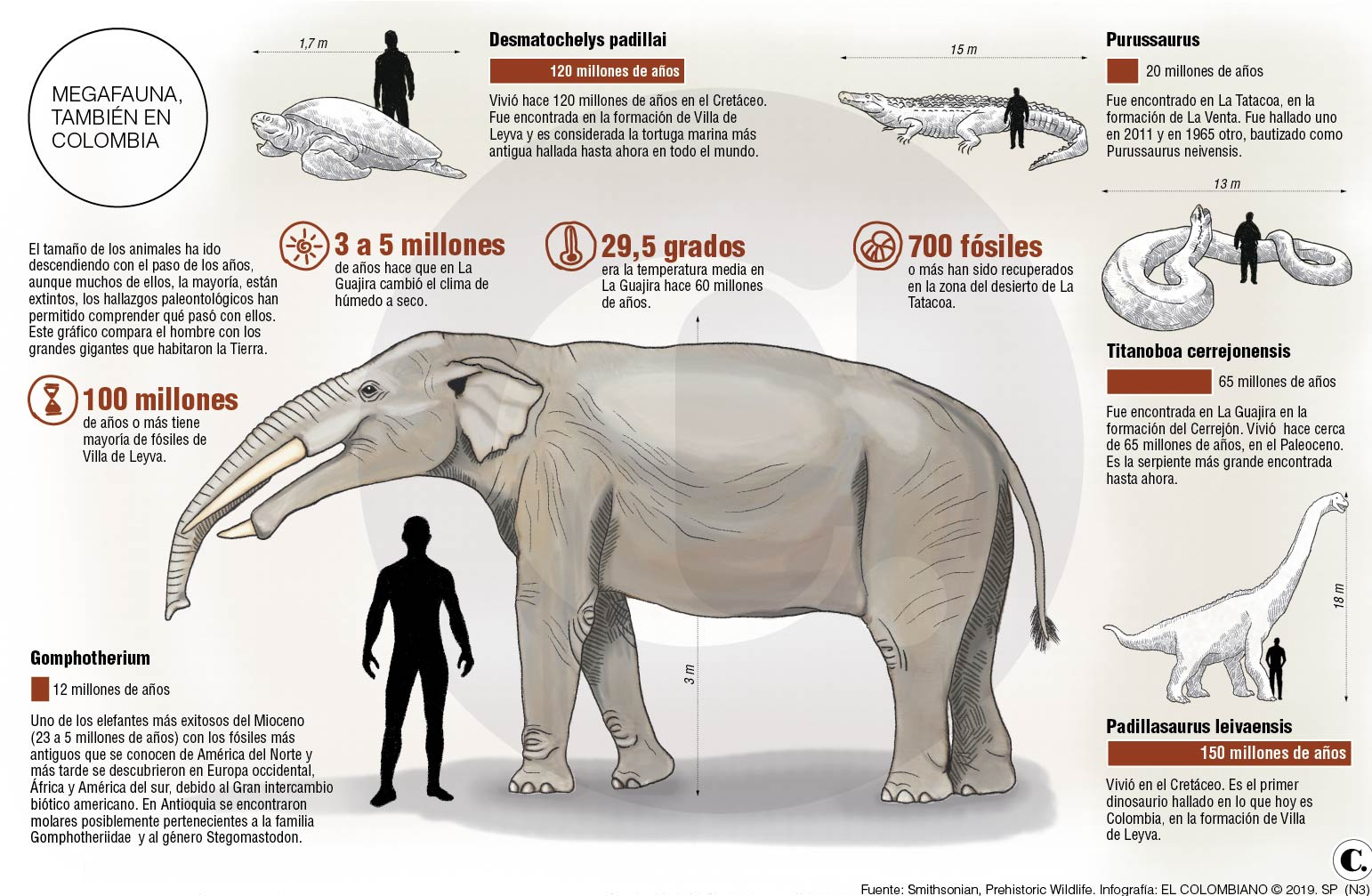 Los gigantes prehistóricos que habitaron Antioquia
