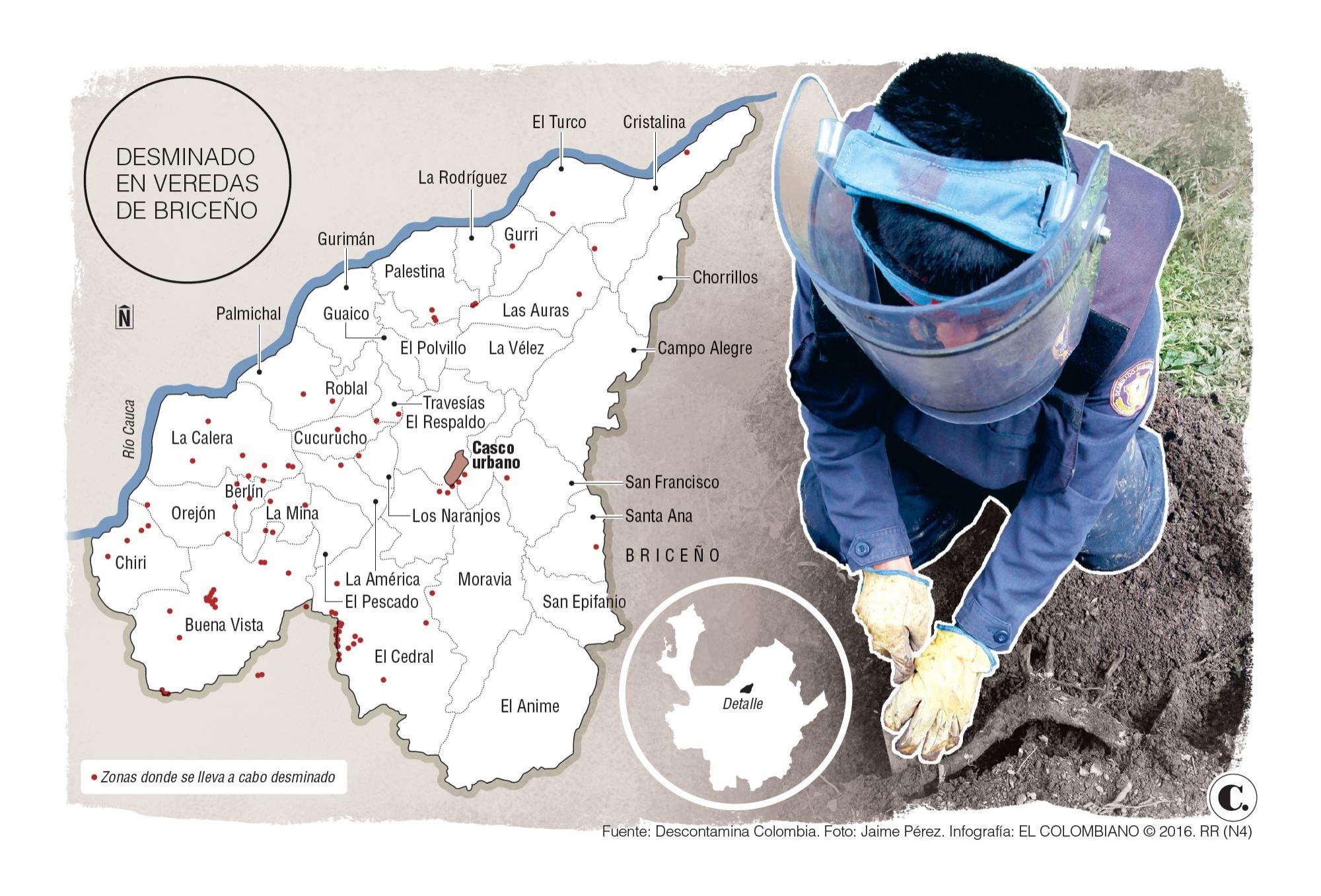 Presencia de minas afecta sustitución de cultivos