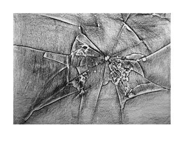 Un espejo roto como relato de las cicatrices