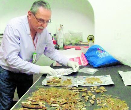 En Envigado encontraron una tumba indígena
