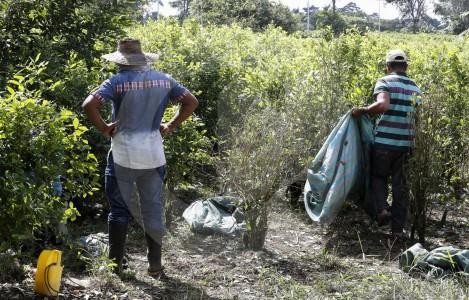 Presidente Duque dice que Plan Colombia sí funcionó