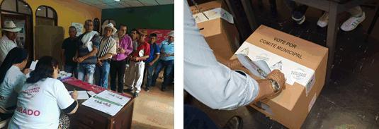 Las elecciones cafeteras en Antioquia están programadas para este domingo 9 de septiembre. Foto: Cortesía Federación Nacional de Cafeteros.