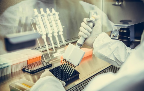 Crean un nuevo fármaco que evita la metástasis y reduce los tumores