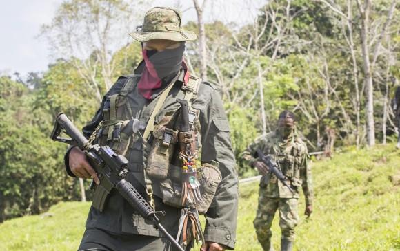 Ecuador reitera anhelo que avancen diálogos en busca de paz en Colombia