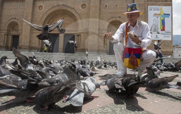 Restricción en la venta de maíz para palomas en el Parque de Bolívar es para los venteros, los ciudadanos aún pueden alimentar a las aves por su cuenta, pero hay que tener cuidado porque se puede perjudicar la salud de estos animales. FOTO Manuel Saldarriaga