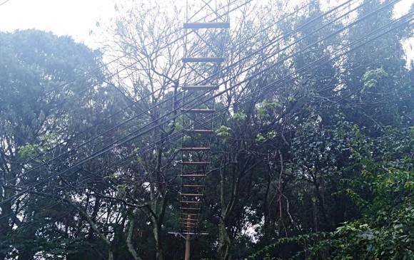 Instalan primer puente colgante para animales en Medellín