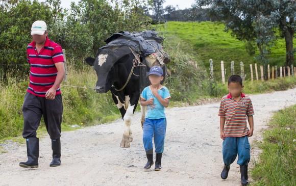 La principal actividad económica es la ganadería lechera, por eso es común encontrarse a las vacas en plena vía, llevando cantinas.