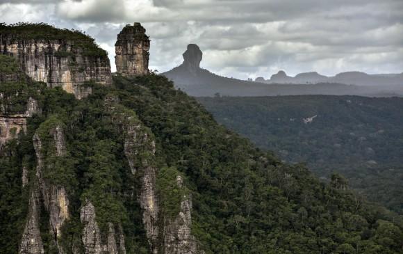 Los tepuyes son formaciones muy antiguas, de roca desnuda con condiciones difíciles para la vida, que se han adaptado. FOTO Guillermo Legaria, AFP