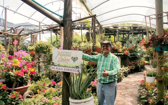 Viveros otros jard nes de ciudad for Viveros forestales en colombia
