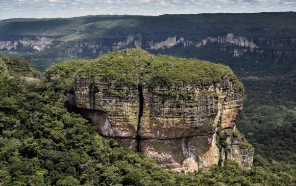 El Parque Natural Serranía de Chiribiquete, sería el lugar del mundo con mayor biodiversidad. La Unesco lo declaró patrimonio mundial y el pesidente Santos oficializa hoy su ampliación. FOTO AFP