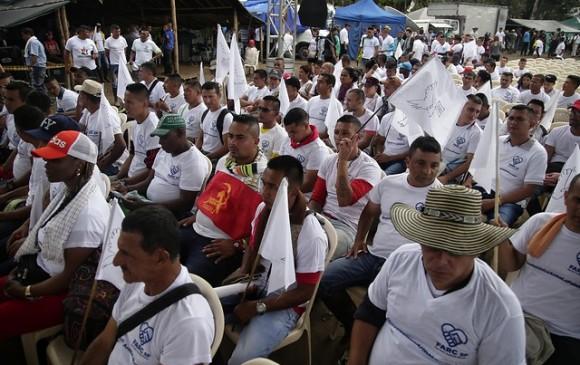 Un dominicano entre extranjeros integraban FARC — REPÚBLICA DOMINICANA