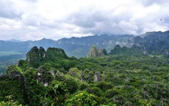Montañas de piedra caliza en Kalimantan Oriental, Borneo. Foto: Pindi Setiawan