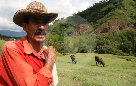 Guerrilleros de las Farc, no podrán acceder a tierras: Miguel Samper