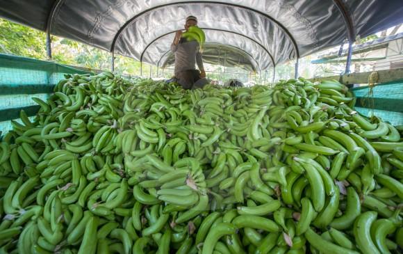 Economía: En Octubre de 2017 exportaciones subieron 15,1%