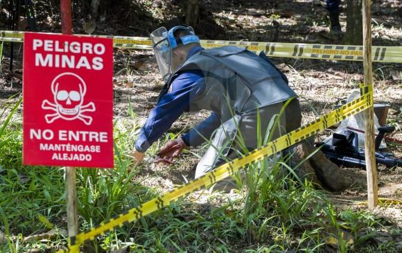 ONG atacada por disidencias de las farc rechazó protección de Fuerza Pública