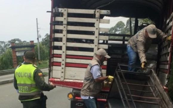 Operativo en Las Palmas. Foto: Secretaría de Seguridad y Convivencia.