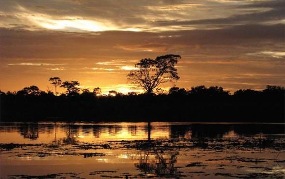 Reserva Natural Irapai, que se encuentra ubicada en el municipio de Puerto Alegría sobre el Río Amazonas, a 25 kilómetros de Leticia, es el lugar perfecto para tener contacto con la naturaleza y el medio ambiente del Amazonas.