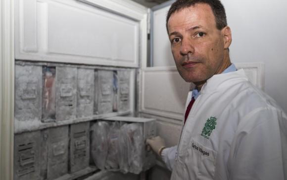 El banco de cerebros que se ubica en instalaciones de la Universidad de Antioquia es un espacio fundamental para encontrar soluciones que hagan más saludables a las próximas generaciones. En la foto, Andrés Villegas, neurocientífico. FOTO: Julio Herrera.