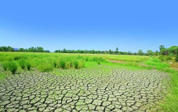 La tierra se queda sin suelos buenos for Tierra suelo wallpaper
