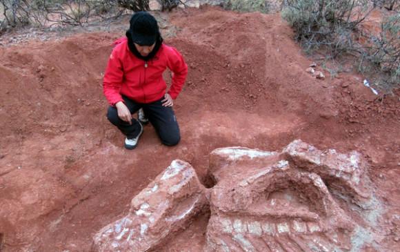 La paleontóloga Carolina Jofré, integrante de la expedición, en el yacimiento situado noroeste argentino, donde fueron hallados los huesos fosilizados de Ingentia prima.FOTO: Cortesía Universidad Nacional de San Juan