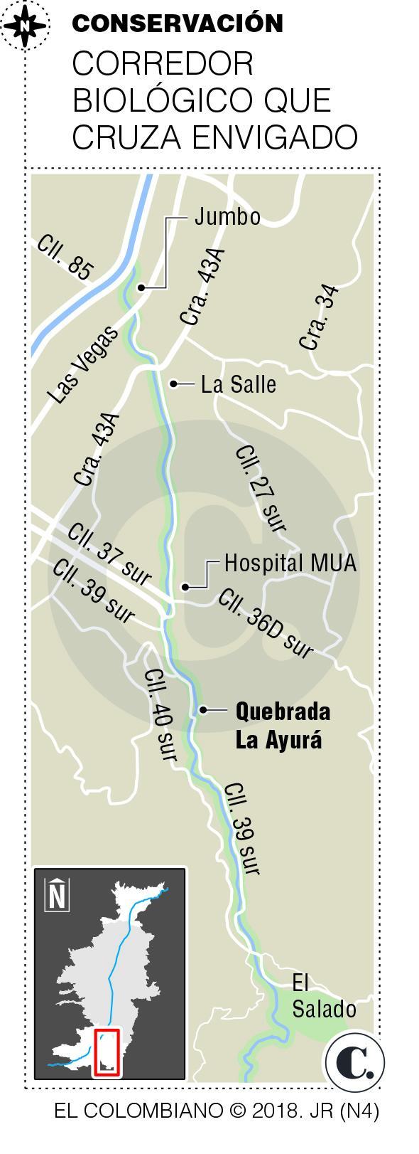 Protección ambiental en la quebrada La Ayurá, Envigado