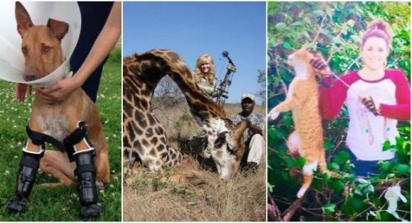 Cada vez son más públicos los rechazos a todo tipo de crueldad animal, la gente pide justicia. FOTOS Cortesía