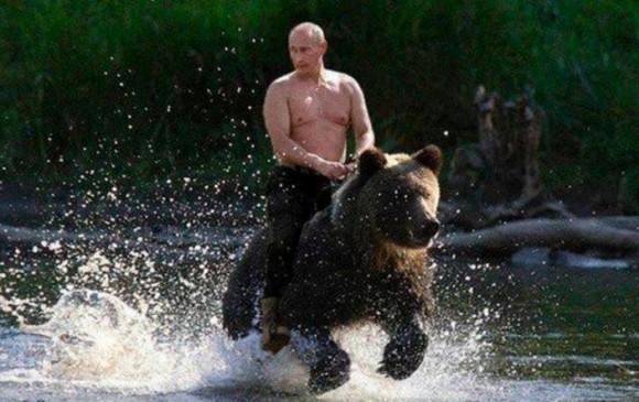 El montaje de Vladimir Putin montando un oso pardo es uno de los memes más populares del presidente ruso.