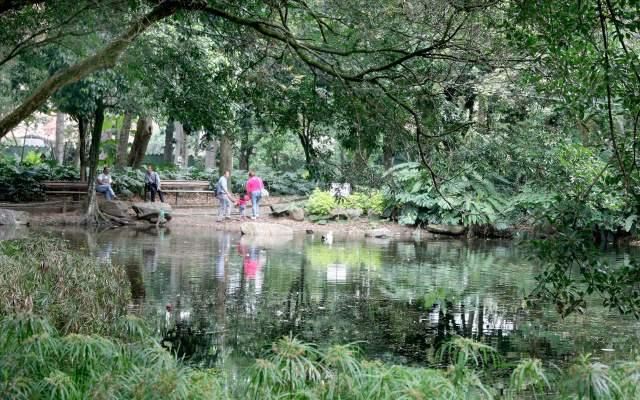 Disfrutar la naturaleza en el jard n bot nico for Bodas en el jardin botanico medellin