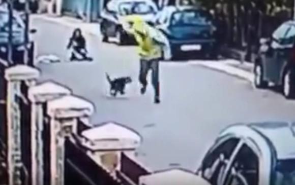 Un perro callejero salva a una mujer de ser robada