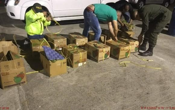 Policía incauta droga camuflada con cebolla en aeropuerto de Cali