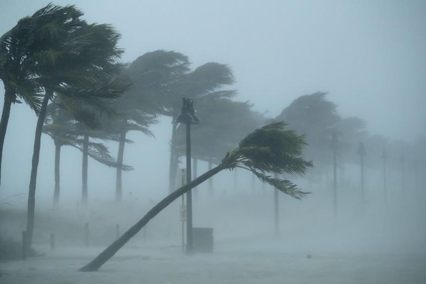 Donald Trump declaró este domingo el estado de catástrofe natural en Florida para socorrer a la península azotada por el gigantesco huracán Irma. FOTO AFP