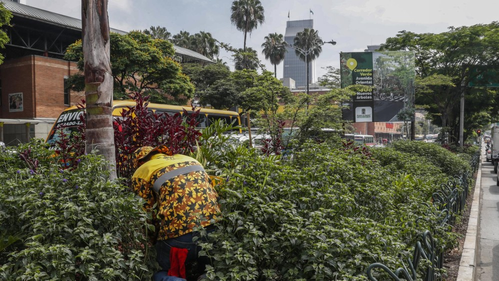 Avenida Oriental frente al parque de San Antonio. Foto: Robinson Sáenz Vargas